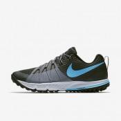 Nike ΑΝΔΡΙΚΑ ΠΑΠΟΥΤΣΙΑ ΓΙΑ ΤΡΕΞΙΜΟ air zoom ανθρακί/cool grey/pure platinum/blue fury_880565-002