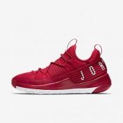 Nike ΑΝΔΡΙΚΑ ΠΑΠΟΥΤΣΙΑ JORDAN jordan trainer pro gym red/pure platinum/pure platinum_AA1344-603