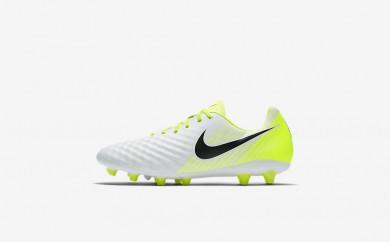 Ανδρικά αθλητικά παπούτσια Nike magista onda ii ag men λευκό/volt/pure platinum/μαύρο 844419-307